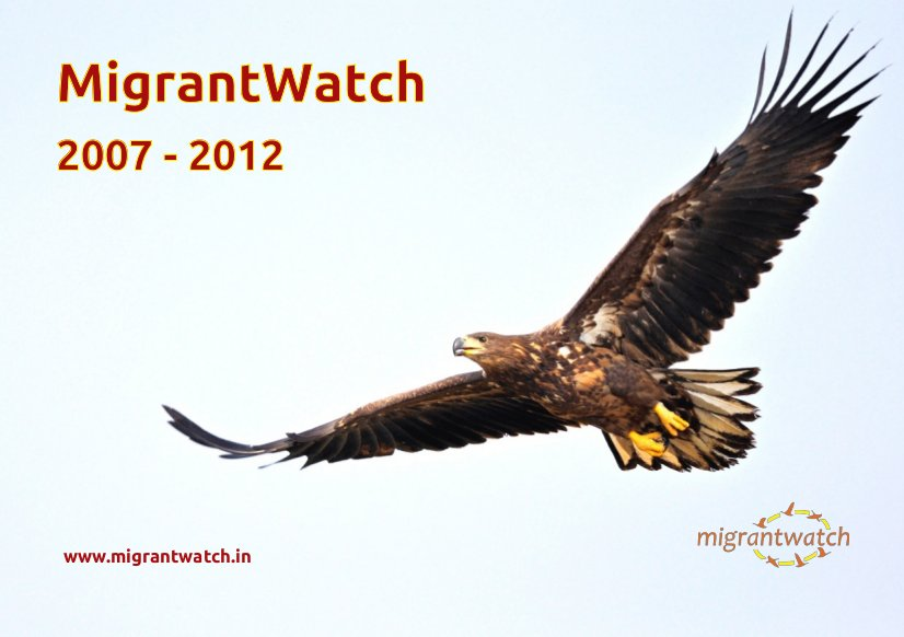 MigrantWatch 5-years summary report 2013-03-cover