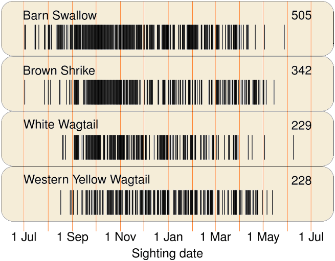 bar code - group 1- wagtails swallow shrike