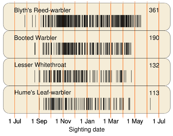 bar code - group 4- warblers